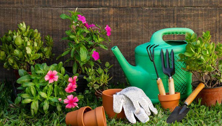 7 jednoduchých krokov k údržbe záhrady