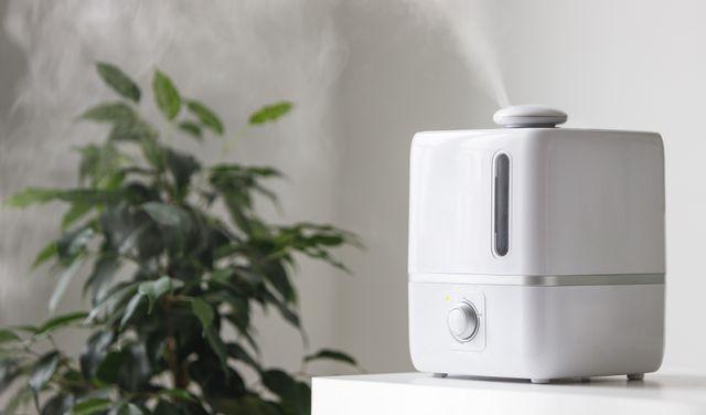 Ako dosiahnúť ideálnu vlhkosť vzduchu v interéri?