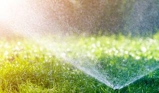 Doprajte vašej záhrade ideálnu závlahu