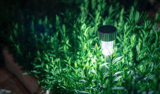 Solárne záhradné svietidlá